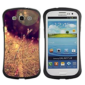 "Pulsar iFace Series Tpu silicona Carcasa Funda Case para SAMSUNG Galaxy S3 III / i9300 / i747 , Sun campo del heno Marrón Cálido"""