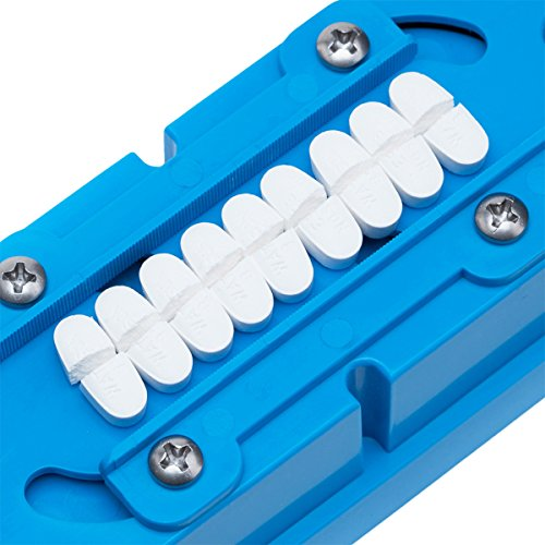 Multiple Pill Splitter. Original Patented Design, with Accurate Pill Alignment, Sturdy Cutting Blade and Blade Guard, for Splitting and Quartering Round or Oblong Pills.US Patent No. 9,827,165. by Pillcut (Image #3)
