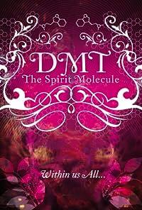 amazoncom dmt the spirit molecule joe rogan md rick