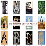 Letter Art Photos by NameArt. 4x6 Letter Alphabet Photos for DIY Name Art Signs Custom Art Gifts.