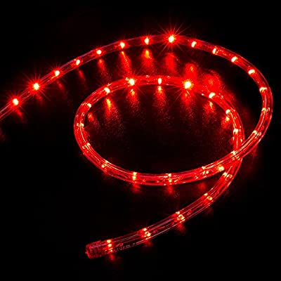 WYZworks Red LED Rope Lights - Flexible 2 Wire Indoor / Outdoor Accent Holiday Christmas Party Decoration 110V Lighting