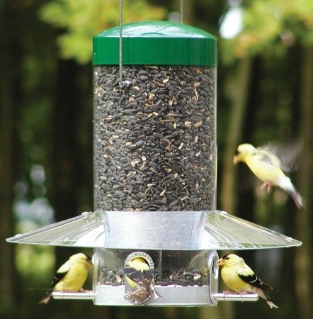 Nature Products 435 Classic Hanging Feeder with Baffle