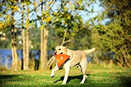 Chuckit! Large Heliflight Dog Toy , Assorted