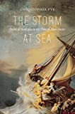 img - for The Storm at Sea: Political Aesthetics in the Time of Shakespeare book / textbook / text book