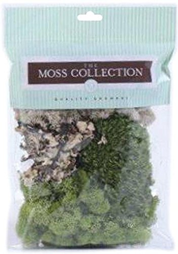 Quality Growers Variety Pack Moss, 108.5 Cubic Inch QG1390