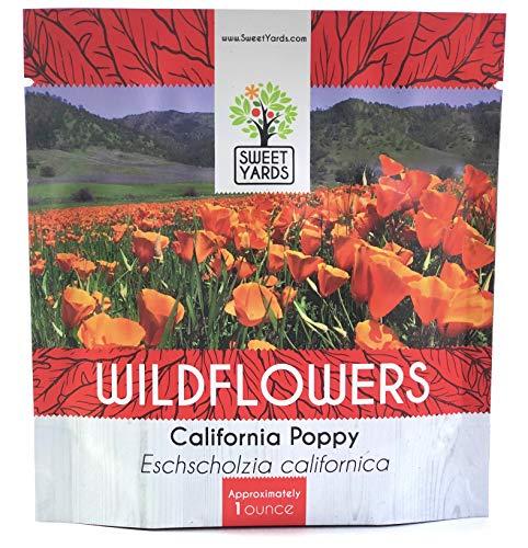 Poppy Flower Seeds - California Orange Poppy Wildflower Seeds - Bulk 1 Ounce Packet - Over 20,000 Native Seeds - California State Flower!