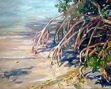 For the Love of Mangroves