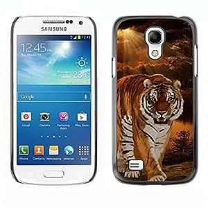 Be Good Phone Accessory // Dura Cáscara cubierta Protectora Caso Carcasa Funda de Protección para Samsung Galaxy S4 Mini i9190 MINI VERSION! // Tiger Night Sunset Wilderness Ray Sun