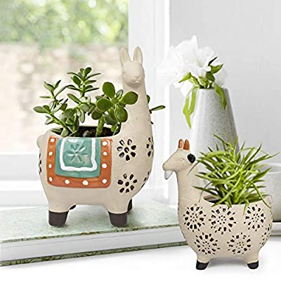 Ceramic Animal Succulent Planter Pots - 6.1 + 4.5 inch Cute Alpaca & Goat Rough Pottery Unglazed Desktop Flower Plant Pots Indoor with Drainage for Herb Cactus Air Plants, Home Decor Gifts for Mom: Garden & Outdoor