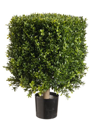21-Square-Boxwood-Topiary-in-Plastic-Pot-Two-Tone-Green-Pack-of-2