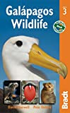 img - for Gal  pagos Wildlife (Bradt Travel Guides (Wildlife Guides)) by David Horwell (8-Aug-2011) Paperback book / textbook / text book