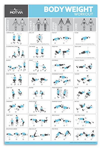 Home Gym Fitness Workout Exercise Poster - No Equipment Necessary - Cardio Exercise Chart