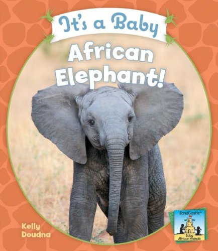 Download It's a Baby African Elephant! (Sandcastle: Baby African Animals) PDF