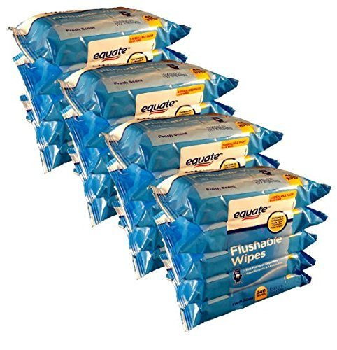 Equate Flushable Wipes 20-pack of 48 Ea. (960ct) by Equate