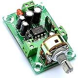 Electronics-salon, kit di amplificatore di alimentazione audio mono, NJM386D, LM386.