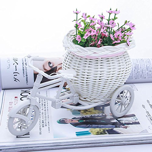 Gold Happy White Tricycle Bike Design Flower Basket Storage Container For Party Wedding Birthday Gifts by Gold Happy (Image #6)