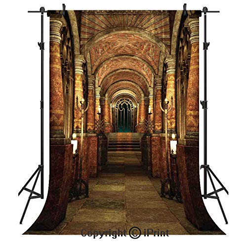 Gothic Photography Backdrops,Ancient Passage with Stairways Secret Gateway Mystical Pillars Medieval Temple Theme,Birthday Party Seamless Photo Studio Booth Background Banner 6x9ft,Red -