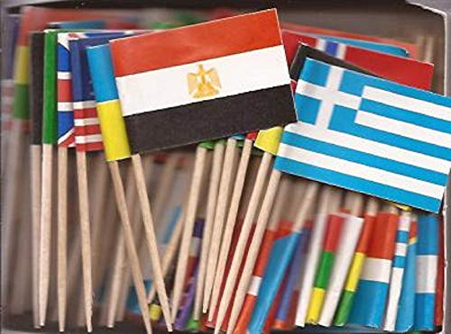 1 Box of Assorted Miniature World Toothpick Flags, 100 Small Mini Assorted Country Olympic World Cup Little Flag Cupcake Toothpicks or Cocktail Sticks & Picks (1 Box of 100) ()