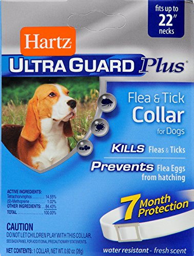 Hartz UltraGuard Plus Water Resistant 7 Month Protection Flea & Tick Collar for Dogs - 22in