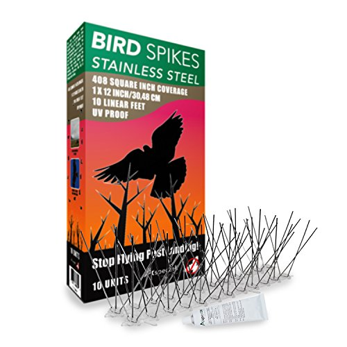 Aspectek l UV Proof l Stainless STEEL Bird Spikes Kit l 10 (Bird Deterrent Spikes)