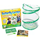 Insect Lore Butterfly Growing Kit Toy - Includes Voucher Coupon for 5 Live Caterpillars to Butterflies