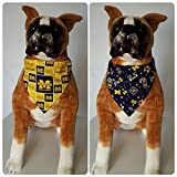 Best Wolverine Bandanas - Reversible Bandana, Made With University of Michigan Fabric Review