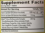 Sundown Naturals Dietary Supplement Co Q-10 100mg - 40 Softgels