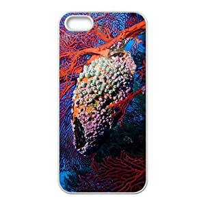 Peculiar Coral Reef Hight Quality Plastic Case for Iphone 5s by lolosakes