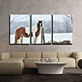 """horizontal wood fence wall26 - 3 Piece Canvas Wall Art - Pinto and Hay - Modern Home Decor Stretched and Framed Ready to Hang - 16""""x24""""x3 Panels"""