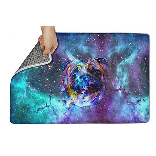 Wardell Indoor/Outdoor Entrance Starry Sky Pug Dog Animal Door Mat Super Absorbs 31