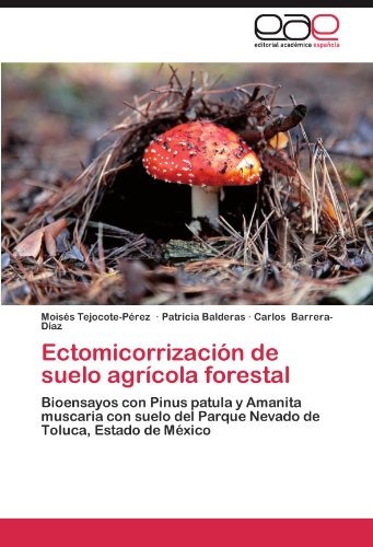Ectomicorrización de suelo agrícola forestal: Bioensayos con Pinus patula y Amanita muscaria con suelo del Parque Nevado de Toluca, Estado de México (Spanish Edition)
