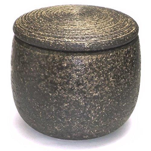 Echimon diospyros Ohachi (1.5 Go) 3-1505