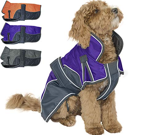 Derby Originals 80-8200-PU-XL Reflective Parka 420D Waterproof Heavy Weight 220g Polyfil Winter Dog Coat (X-Large, Purple/Charcoal)