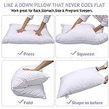 HOMEIDEAS Goose Down Alternative Bed Pillows for