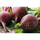 Large Red Beets - Avg 10 Lb Case