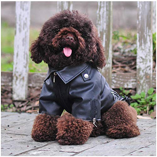 Cuteboom Dog Leather Jacket Pet Cool Motorcycle Clothing Dog Winter Leather Jacket for Small, Medium and Large Dogs and Cats (M, Black) ()