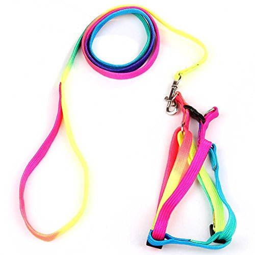 yueton Dog Pet Puppy Cat Kitty Adjustable Nylon Leash Rainbow Dog Chest Straps Chain Seven Color Traction Thoracic Dorsal Suits Dog Rope Dog's Leash Chain