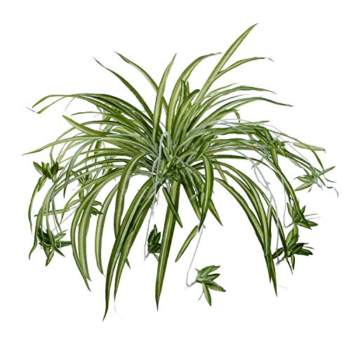 Artiflr 2Pack Artificial Flowers Spider Plants Fake Silk Plant Faux Greenery Artificial Plants for Home Wall Indoor Outdside(Not Include Hanging Basket)