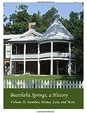 Beersheba Springs, A History: Volume II. Families, Homes, Lore and More