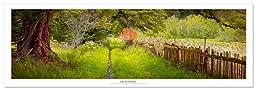 Award Winning Landscape Panoramic Art Print Poster: Rustic Barn