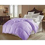 Single Piece King Lilac Double-Filled Comforter, Duvet Insert, Soft & Hypoallergenic, 90 GSM Shell, Piped Edges, Down Alternative, Solid Color, Traditional Style, Polyester Fill, Purple, Microfiber