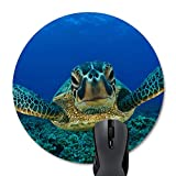 Wknoon Sea Turtle Round Mouse Pad Custom, Seaturtle Navy Blue Scene Underwater World Landscape Circular Mouse Pads Funny Mat