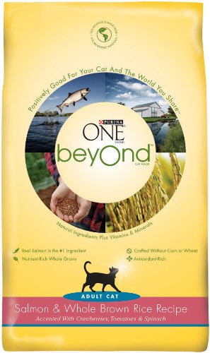 Purina One Beyond Cat Salmon Brown Rice, 6-Pounds, My Pet Supplies