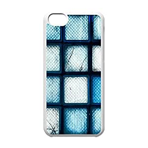 Cool iPhone 5C White Case,Blue Broken Glass Bricks Customized Hard Back Case for iPhone 5C iPhone 5Cs ¡ê¡§White 102201¡ê? by ruishername