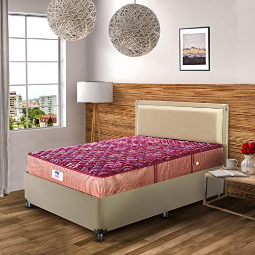 Peps Springkoil Bonnell 6 inch Single Size Spring Mattress  Maroon, 78x36x06  with Free Pillow