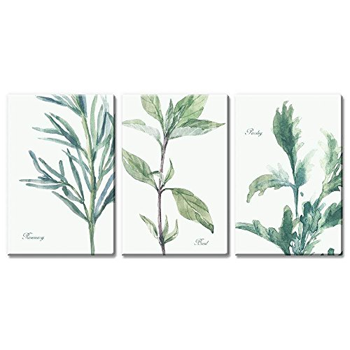 3 Panel Watercolor Style Plants of Rosemary Basil and Parsley x 3 Panels