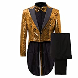 Men's 2 Pieces Sequins Tailcoat