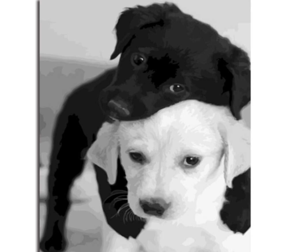 WFYY Malen Nach Zahlen Erwachsene Hunde Schmiegen Sich Aneinander Abstrakte Puzzle Spiel Spielzeug Geschenke Artwork Für Kinder 16X20 Inch Holzrahmen B07PQT4PC7 | Genial