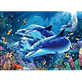 Holographic Wall Art-POSTERS That FLIP and CHANGE images-Lenticular Technology Artwork--MULTIPLE PICTURES IN ONE--HOLOGRAM Images Change--Technology by THOSE FLIPPING PICTURES (Seaworld)