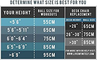 Live Infinitely Exercise Ball  Professional Grade Exercise Equipment Anti  Burst Tested With Hand Pump  Supports 2200lbs  Includes Workout Guide  Access  ...